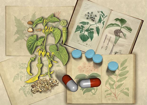 Растительные лекарства назвали глобальным риском для здоровья