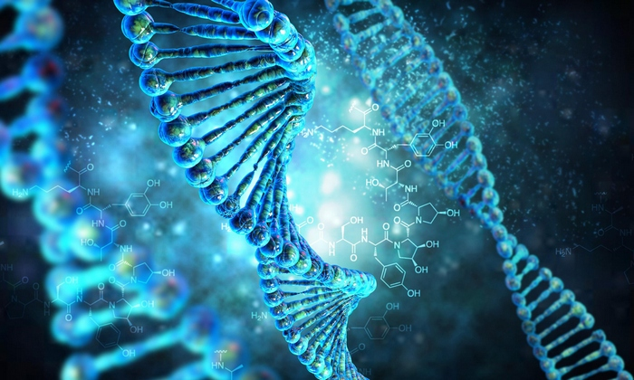 Загадочный текст, скрытый в ДНК человека