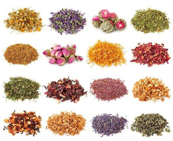 Тpaвяные, цветочные и ягодные чаи – когда их пить и чем они полезны?