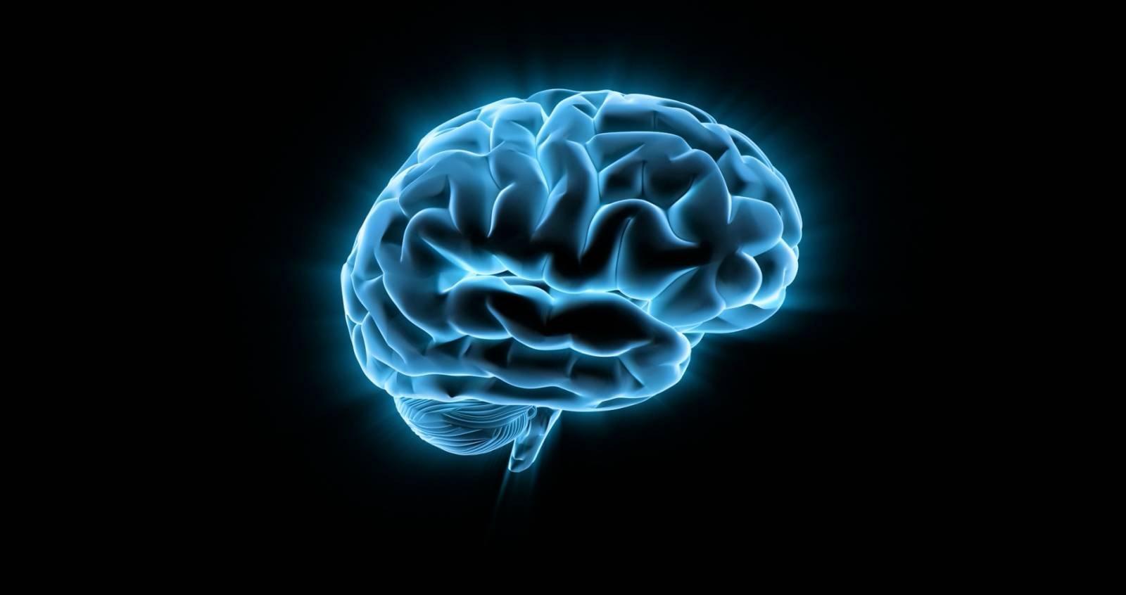 Когда мозгу не хватает еды, он отключает крайне затратный процесс самоконтроля